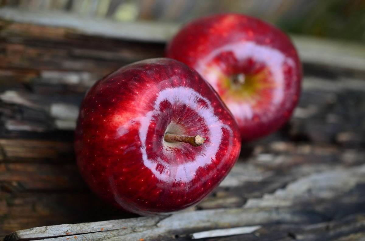 Pácolt alma mentával