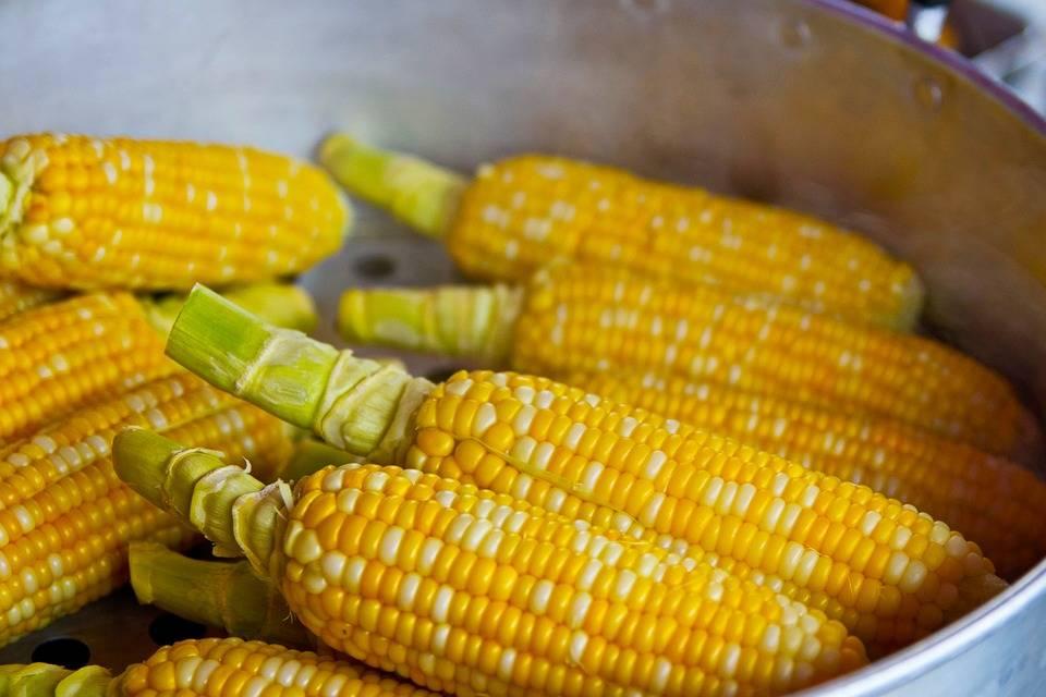 Baconbe tekert kukorica