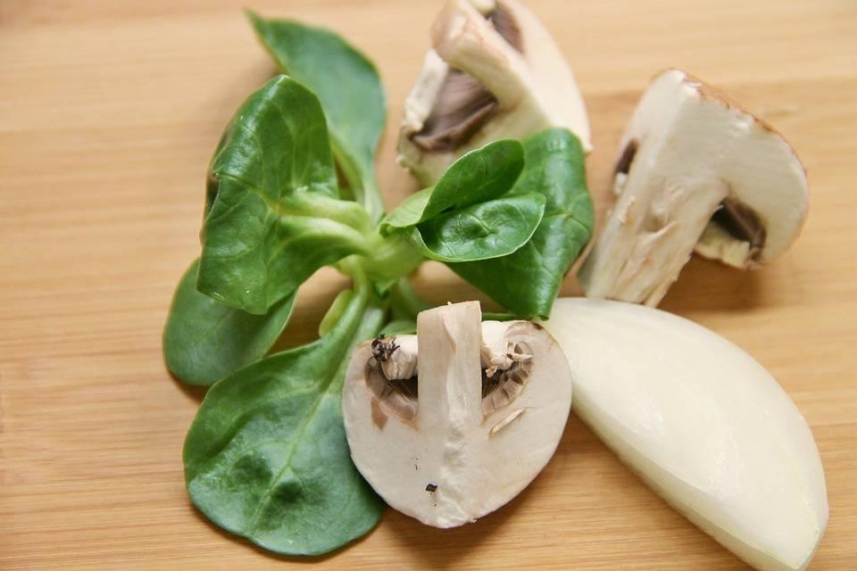 Grillezett gomba saláta