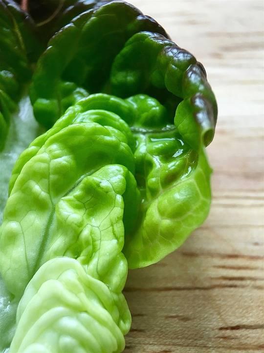 Grillezett saláta