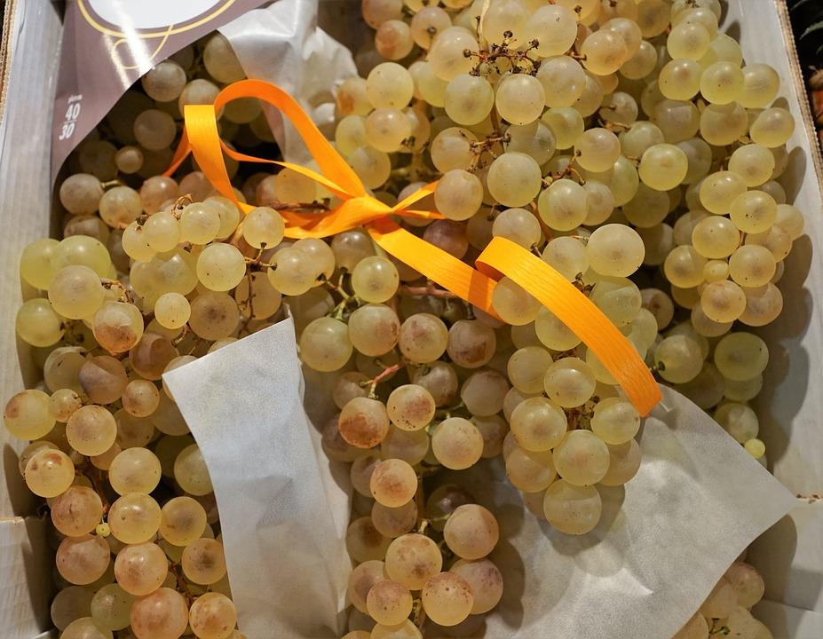 Grillezett szőlő saláta