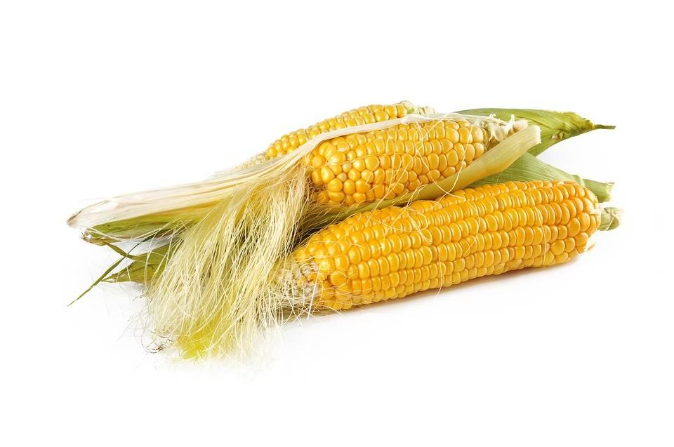 Grillezett kukorica ízesített vajjal